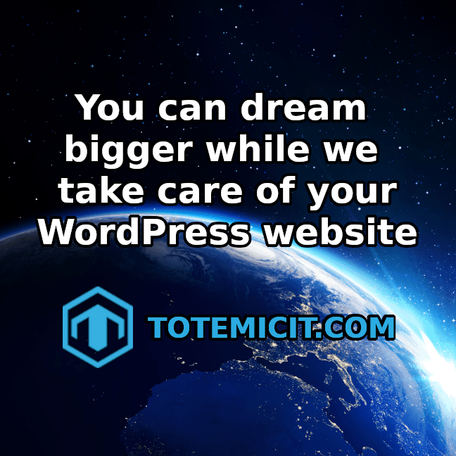 Totemic IT - Dream Bigger